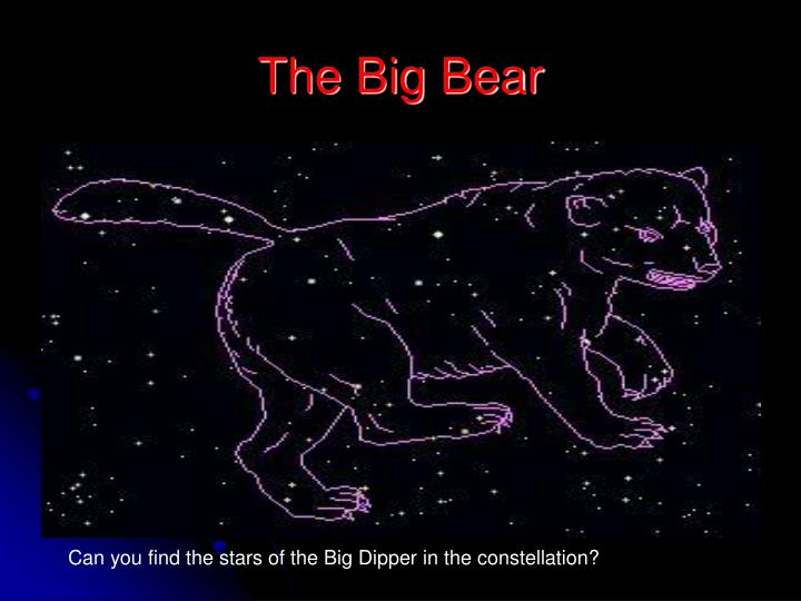 The Big Bear