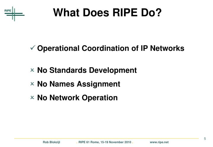 What Does RIPE Do?