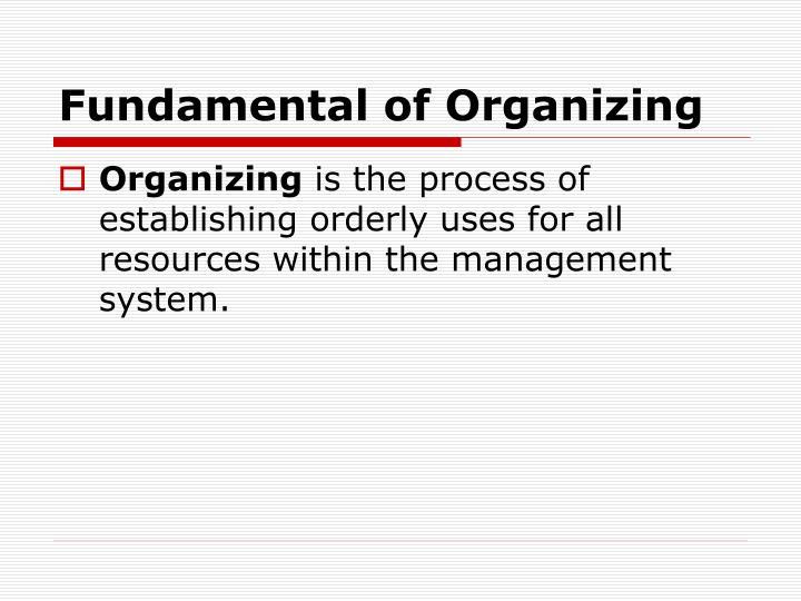 Fundamental of Organizing