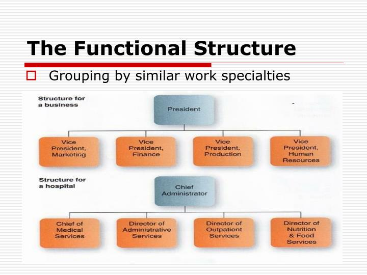 The Functional Structure