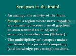 synapses in the brain