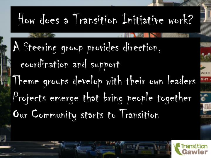 How does a Transition Initiative work?