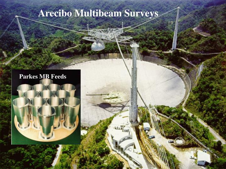 Arecibo Multibeam Surveys