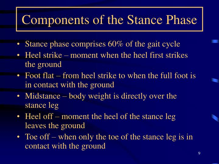 Components of the Stance Phase