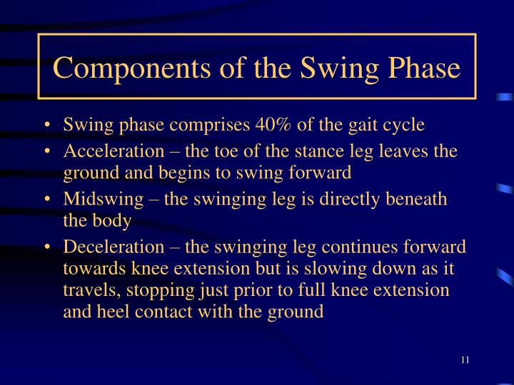 Components of the Swing Phase