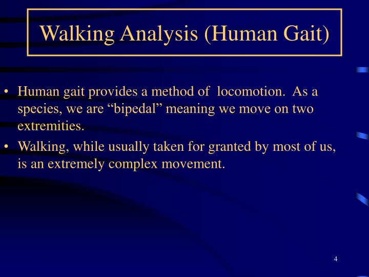Walking Analysis (Human Gait)