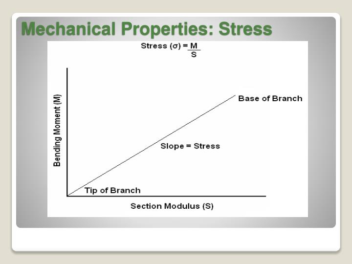 Mechanical Properties: Stress