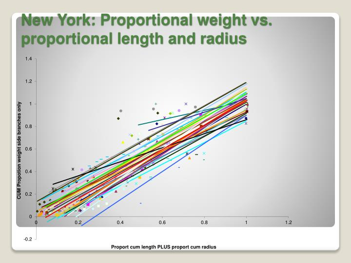 New York: Proportional weight vs. proportional length and radius
