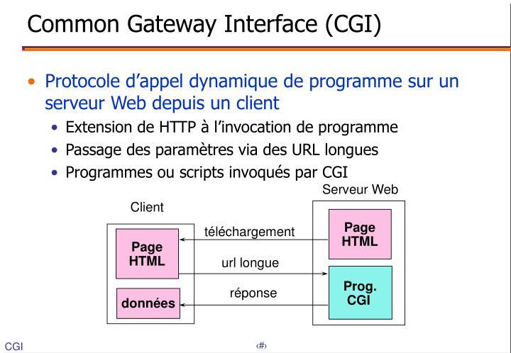 Common Gateway Interface (CGI)