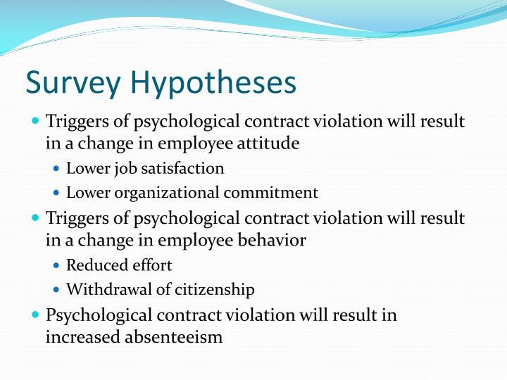Survey Hypotheses