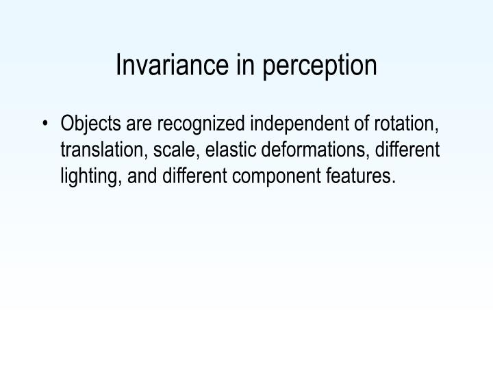 Invariance in perception