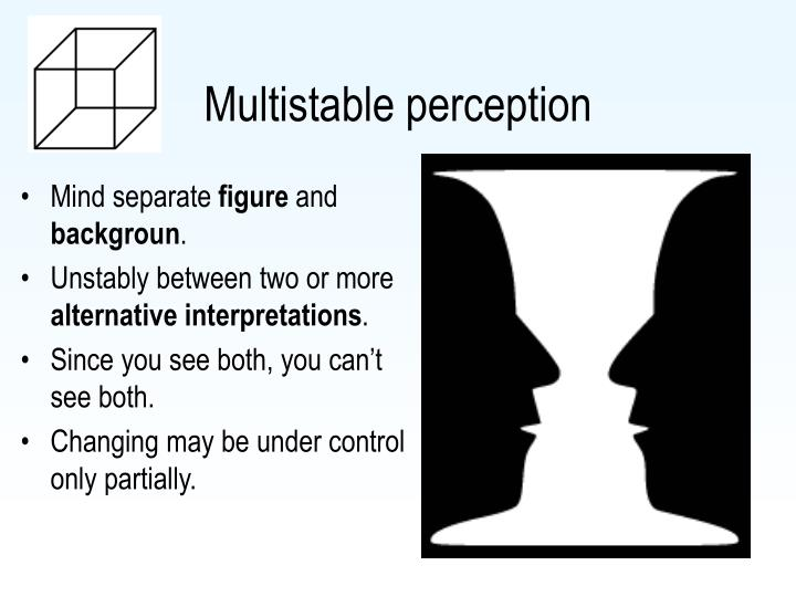 Multistable perception
