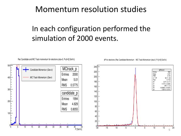 Momentum resolution studies
