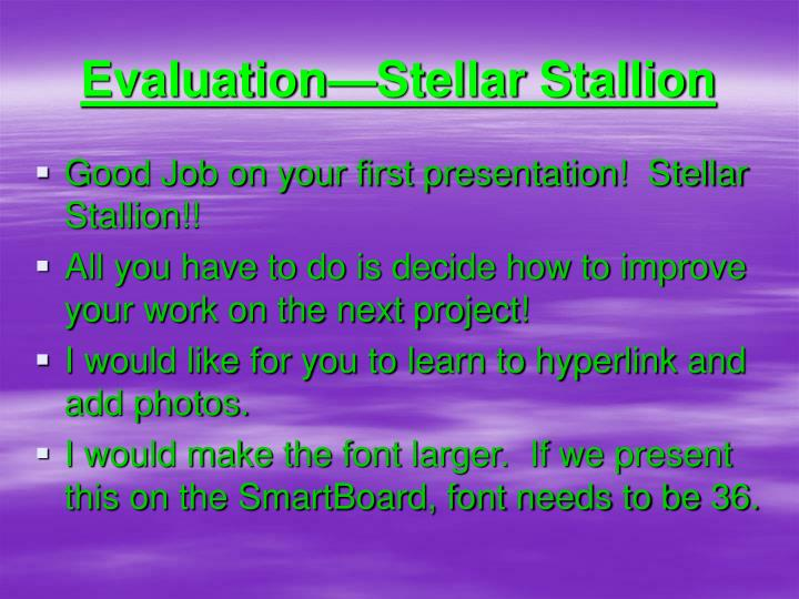 Evaluation—Stellar Stallion