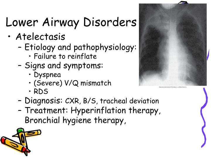 Lower Airway Disorders