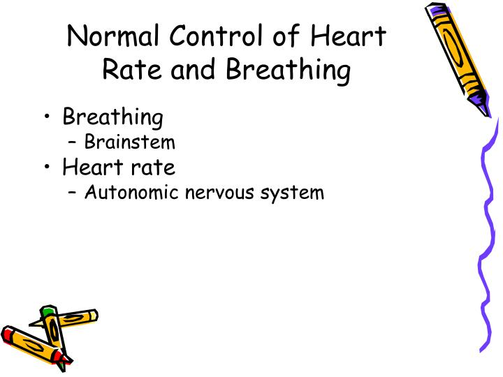 Normal Control of Heart Rate and Breathing
