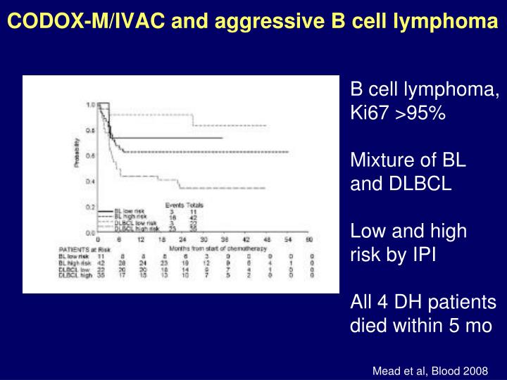 CODOX-M/IVAC and aggressive B cell lymphoma