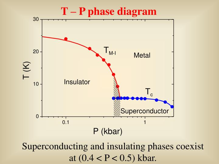 T – P phase diagram
