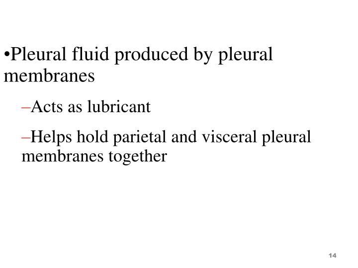 Pleural fluid produced by pleural membranes