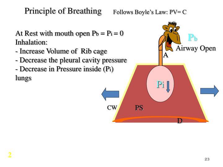 Principle of Breathing