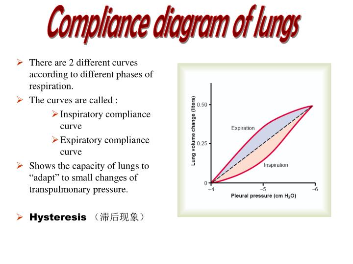 Compliance diagram of lungs