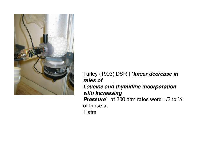 "Turley (1993) DSR I """