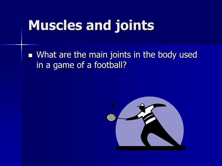 Muscles and joints
