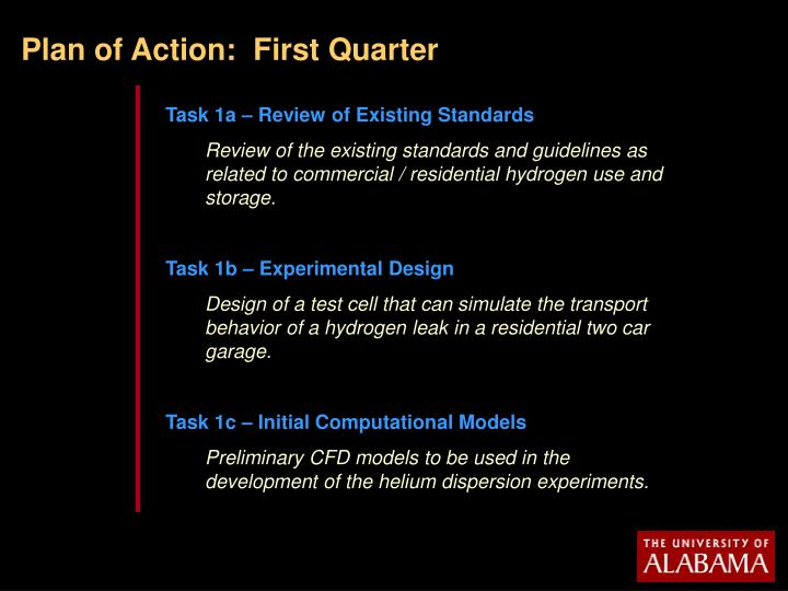 Plan of Action:  First Quarter