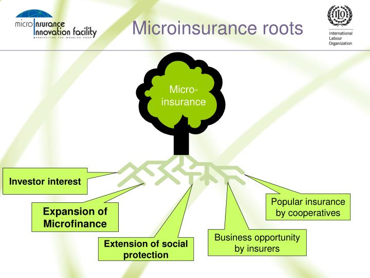Microinsurance roots