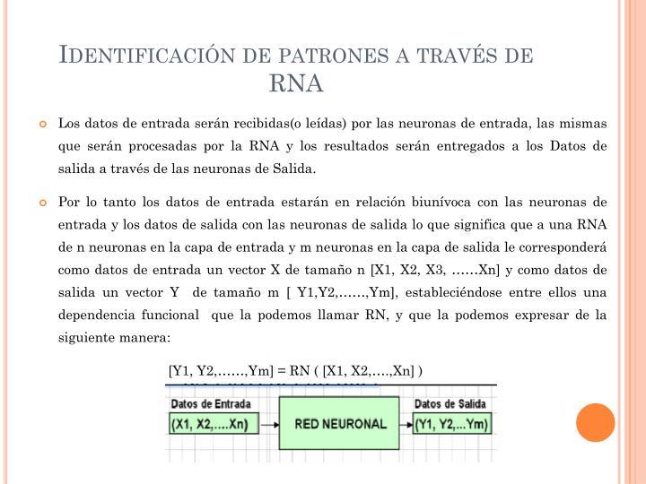 Identificación de patrones a través de RNA