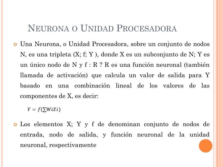 Neurona o Unidad Procesadora