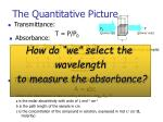 the quantitative picture