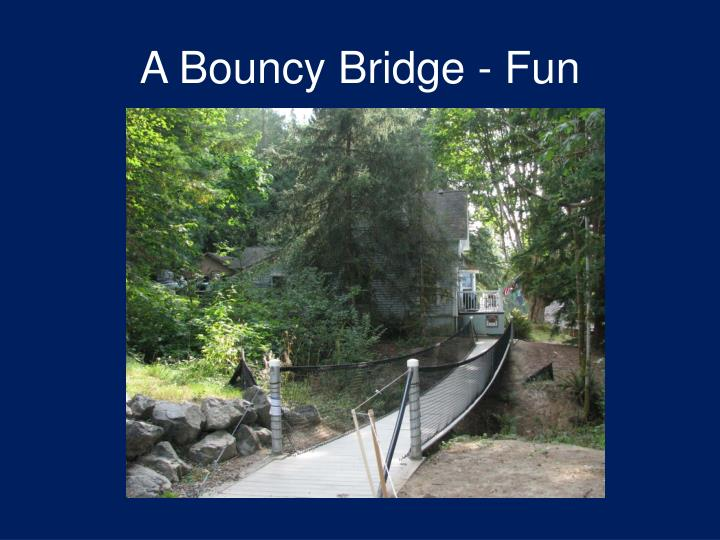 A Bouncy Bridge - Fun