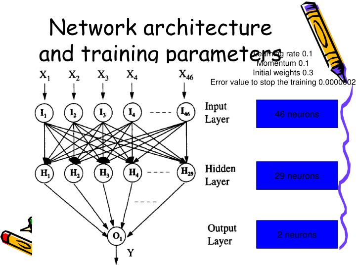 Network architecture and training parameters