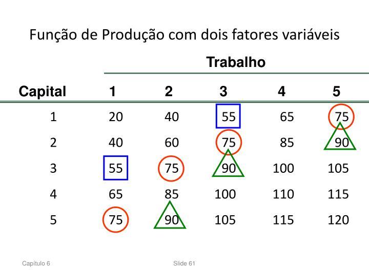 Função de Produção com dois fatores variáveis