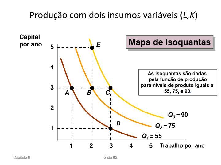 Produção com dois insumos variáveis (