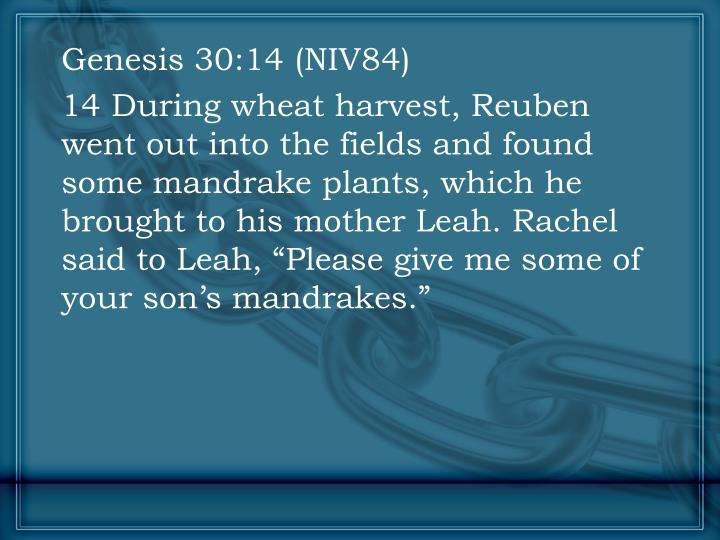 Genesis 30:14 (NIV84)