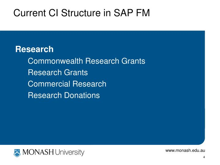 Current CI Structure in SAP FM