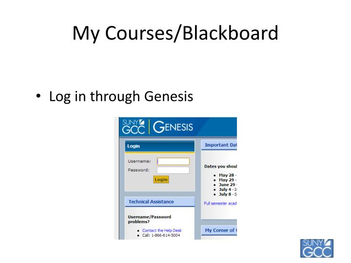 My Courses/Blackboard