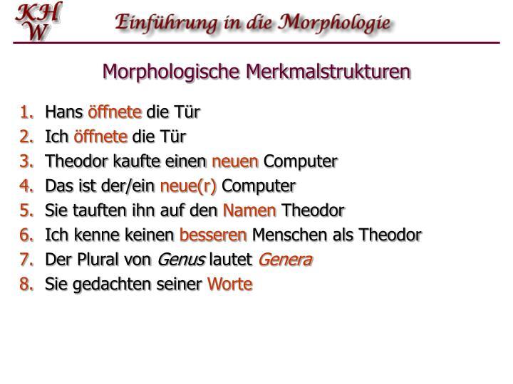 Morphologische Merkmalstrukturen