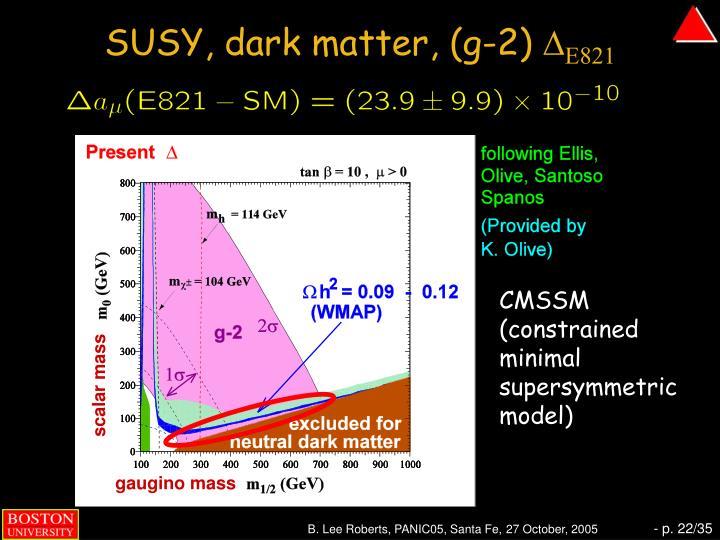 SUSY, dark matter, (g-2)