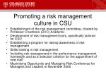 promoting a risk management culture in csu