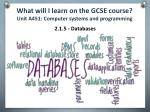 what will i learn on the gcse course unit a451 computer systems and programming4
