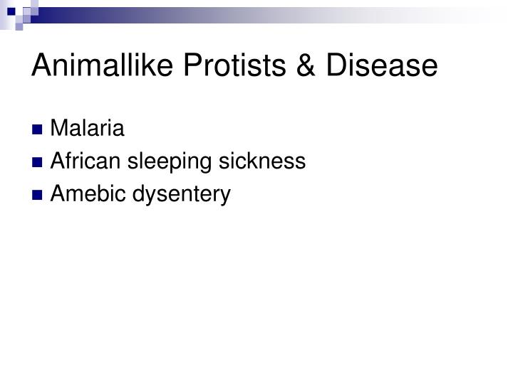 Animallike Protists & Disease