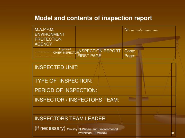 Model and contents of inspection report