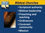 biblical churches