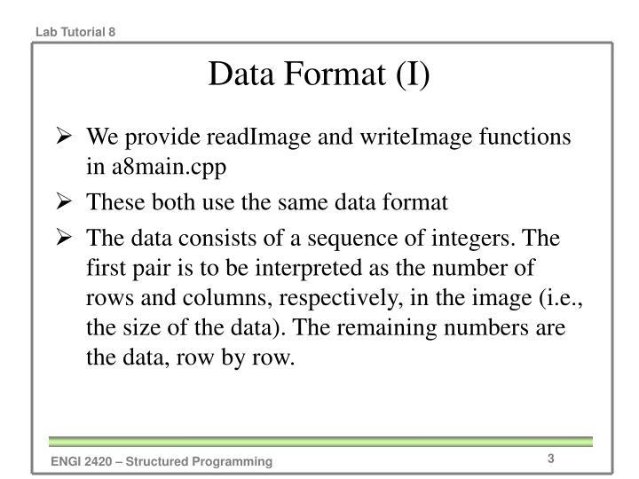 Data Format (I)