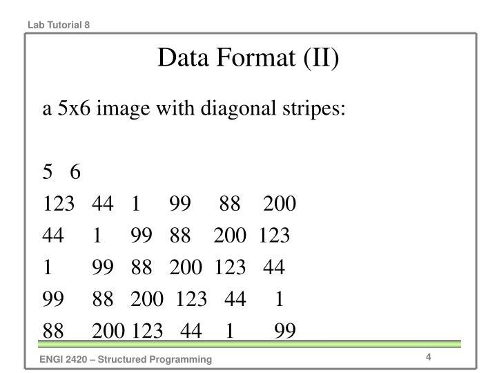 Data Format (II)