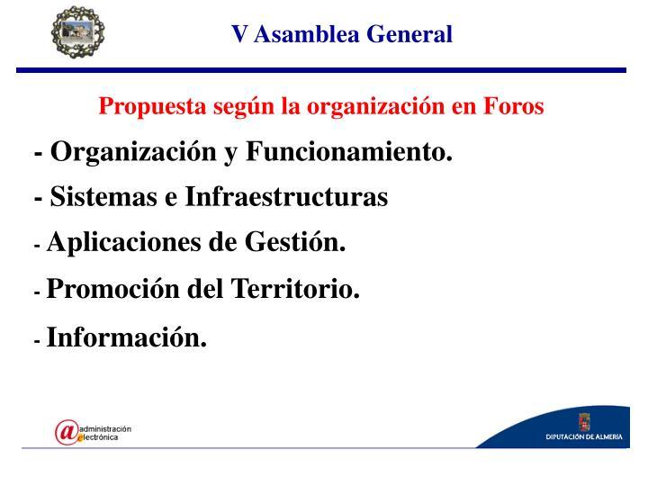 V Asamblea General
