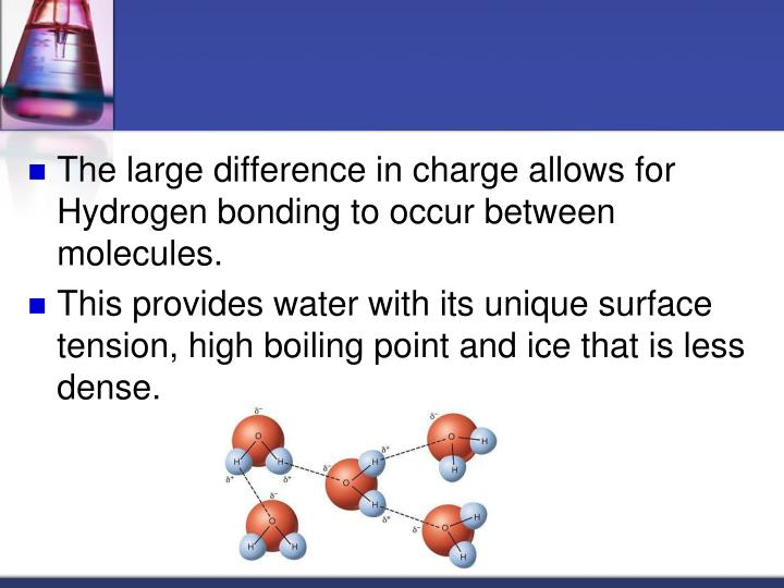 The large difference in charge allows for Hydrogen bonding to occur between molecules.